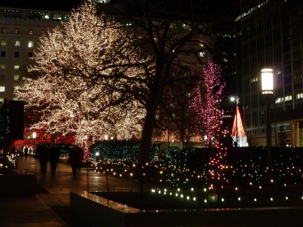 A view of some trees on the grounds of Temple Square lit up with Christmas lights on a winter evening.