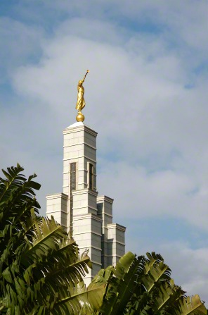 The spire and angel Moroni on the Accra Ghana Temple rise above the palm trees on the temple grounds.