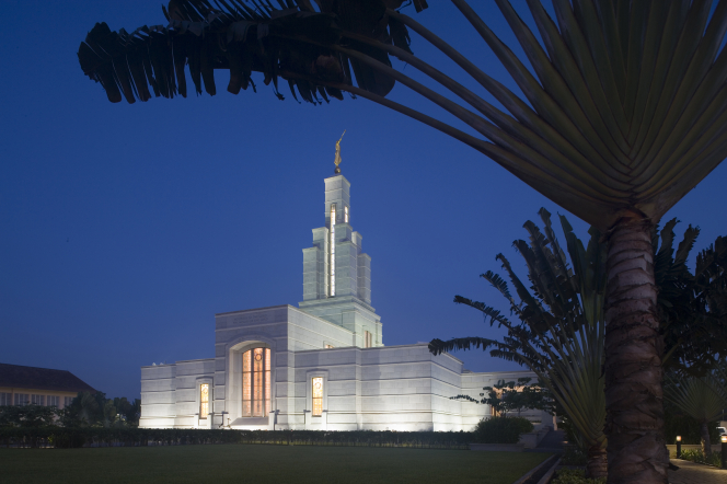 A large palm tree, with the Accra Ghana Temple in the background, lit up at night.