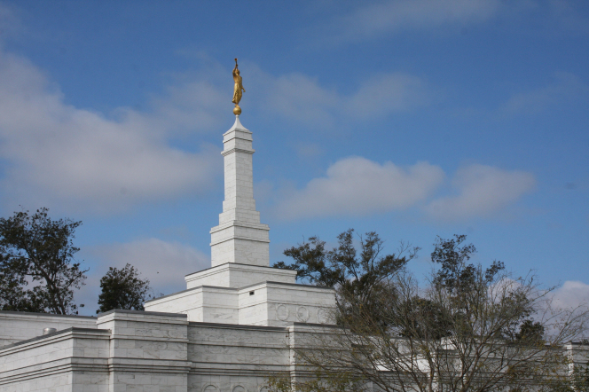 The spire on the Baton Rouge Louisiana Temple rising above the trees on the temple's grounds.