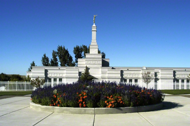 A flower bed full of orange and purple flowers, with the Bismarck North Dakota Temple in the background.