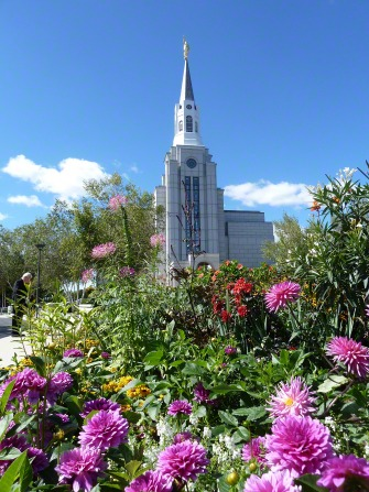 Flowers in the flower bed in front of the Boston Massachusetts Temple, with the temple seen in the background.