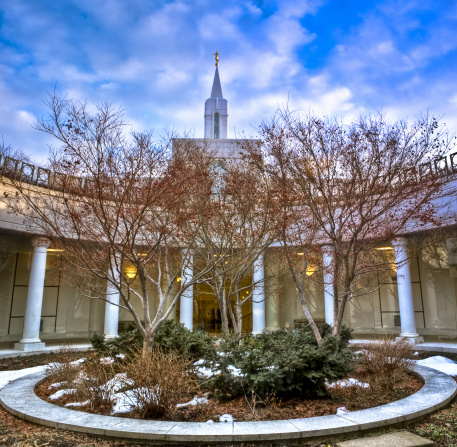 Trees growing within the atrium of the Bountiful Utah Temple, with the spire of the temple in the background.