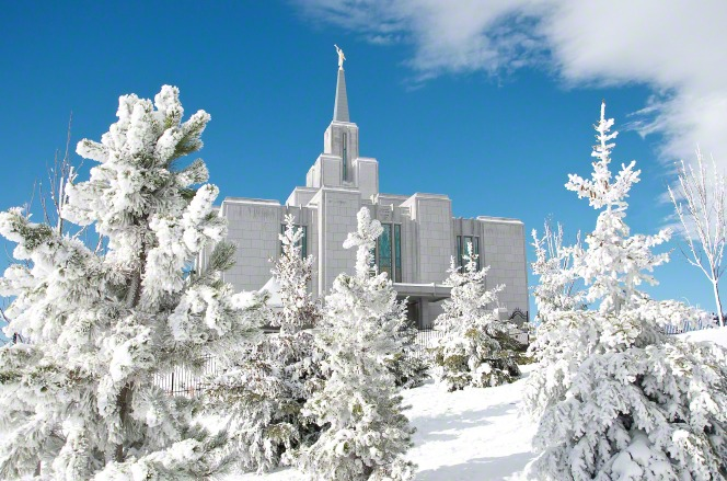 The Calgary Alberta Temple covered in snow in the wintertime, with large white trees in the foreground.