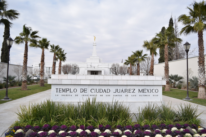 A view of the Ciudad Juárez Mexico Temple in the background, with the temple name sign and scenery in the foreground.