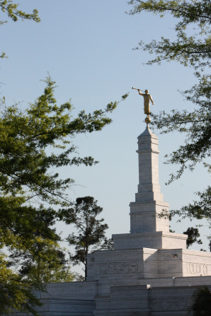 The spire with the angel Moroni on top of the Columbia South Carolina Temple during the daytime, bordered by trees.
