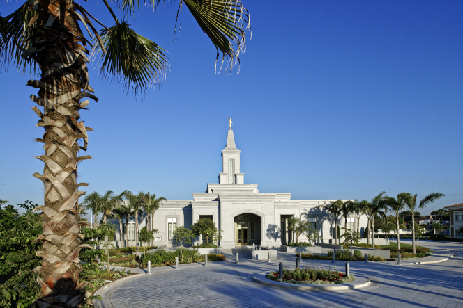 A landscape view of palm trees and sidewalks in front of the Córdoba Argentina Temple on a sunny day.