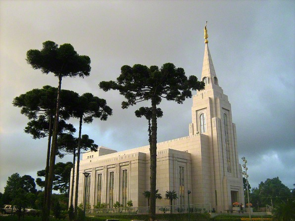 A side view of the Curitiba Brazil Temple, with a large cluster of green trees growing on the temple grounds.