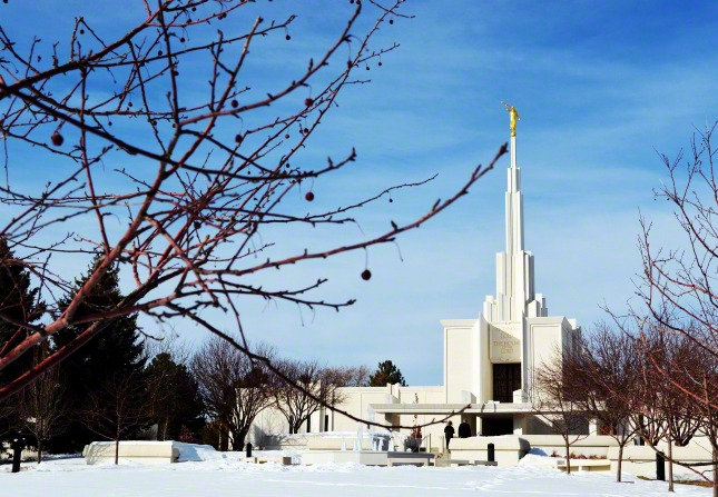 The Denver Colorado Temple in the wintertime, covered in snow and being viewed through the branches of a bare tree.