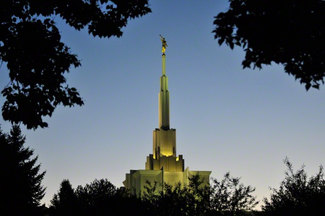 The spire of the Denver Colorado Temple, seen framed by the leaves of large trees and illuminated by the temple's exterior lights.