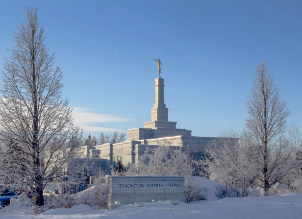 The Edmonton Alberta Temple on a sunny winter day, with large bare trees in the foreground.