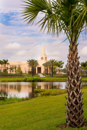 A large palm tree on the grounds of the Fort Lauderdale Florida Temple, with the temple seen in the background reflected in a pond.