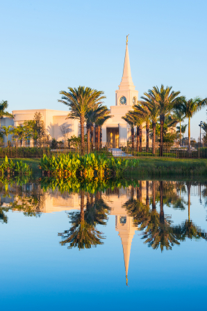 A side view of the Fort Lauderdale Florida Temple being seen through rows of palm trees and reflected in a pool of water on the temple grounds.