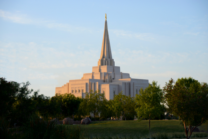 The Gilbert Arizona Temple seen from afar, with a row of green trees in the foreground and the temple's spire in the distance.