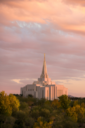 A view of the Gilbert Arizona Temple rising above the trees from afar in the late evening, with pink and orange light.