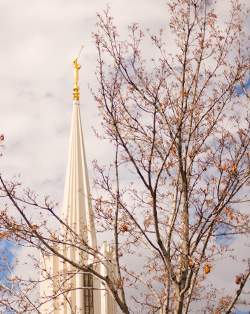 The spire on the Jordan River Utah Temple and the angel Moroni statue seen through the nearly bare branches of a nearby tree.