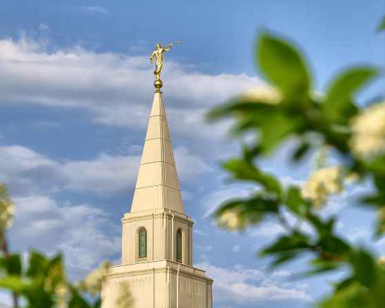 The spire on the Kansas City Missouri Temple with the angel Moroni, in the daytime, with the green leaves of a tree in the foreground.