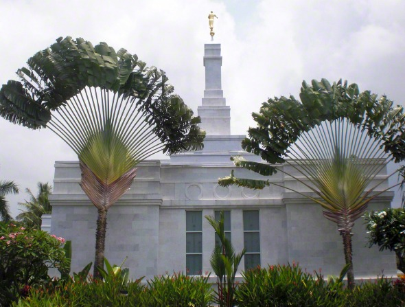 The Kona Hawaii Temple on a sunny day, with two large plants partially blocking the view.