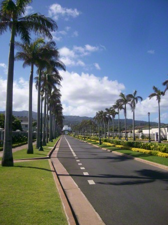 The road leading up to the Laie Hawaii Temple, lined with palm trees, with the temple seen off in the distance.