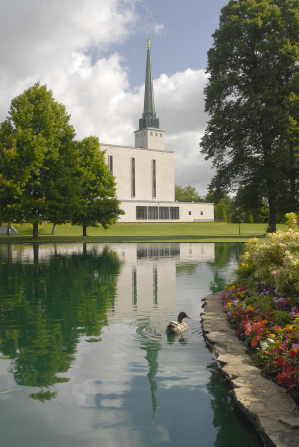 The spire on the London England Temple and its reflection in the nearby pond, where a duck is swimming.