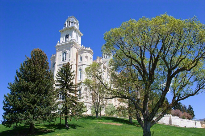 A side view of the Manti Utah Temple, seen through trees, set on top of a green grassy hill.
