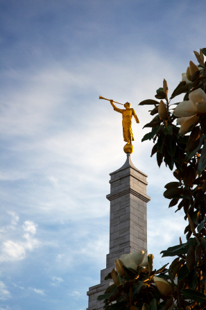 The spire and angel Moroni on the Memphis Tennessee Temple, with a leafy tree on the side.