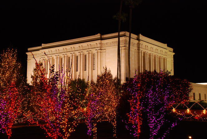 Trees lit up with bright red, orange, and pink Christmas lights, with the Mesa Arizona Temple lit up behind at nighttime.