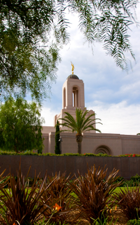A partial view of the Newport Beach California Temple, with the spire seen over the surrounding vegetation, including palm trees.