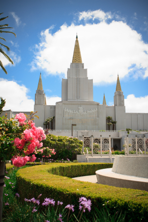 Flowers and vegetation on the grounds of the Oakland California Temple, including a long green hedge, with the temple seen beyond.