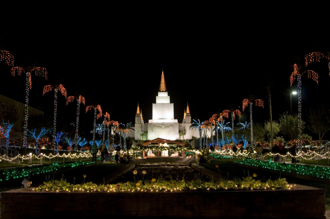 The grounds of the Oakland California Temple at night, with the trees covered in colored lights and the temple illuminated in the distance.