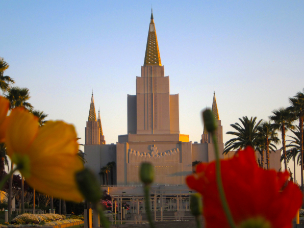 The front of the Oakland California Temple seen at sunset, between rows of red and yellow flowers growing on the temple grounds.
