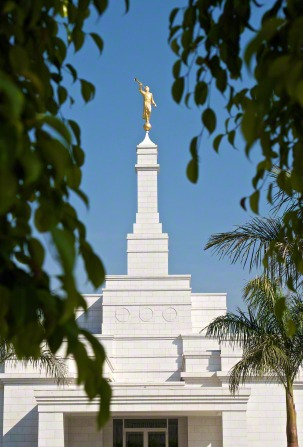 The spire on the Oaxaca Mexico Temple, with the angel Moroni on top and the green leaves of a tree on the temple grounds framing the view.