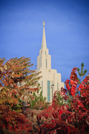 The spire of the Oquirrh Mountain Utah Temple rising over the red leaves of an autumn tree on the temple grounds.