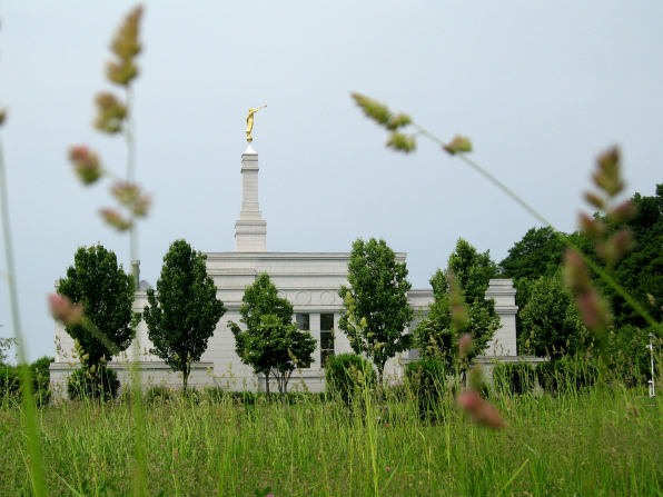 A view of the Palmyra New York Temple off in the distance, with a few bits of tall grass in the foreground.