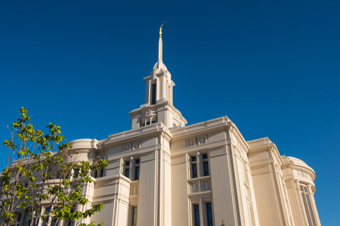 An upward view of the Payson Utah Temple spire from the south side during the day, including a tree.