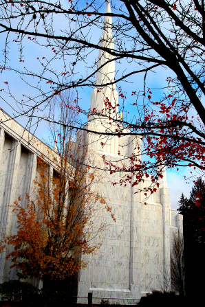 One of the spires on the Portland Oregon Temple in the fall, with fall leaves clinging to almost bare trees in the foreground.