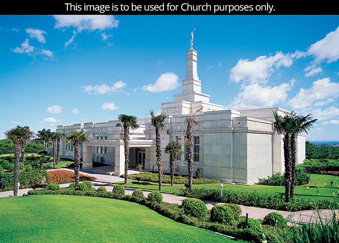 The Porto Alegre Brazil Temple and grounds seen from a distance, with palm trees growing on the grounds.