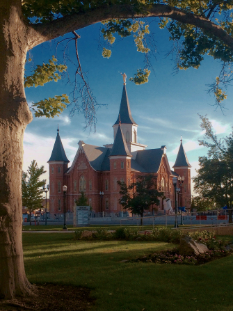 A portrait view of the Provo City Center Temple during the day, with a tree on the left side.