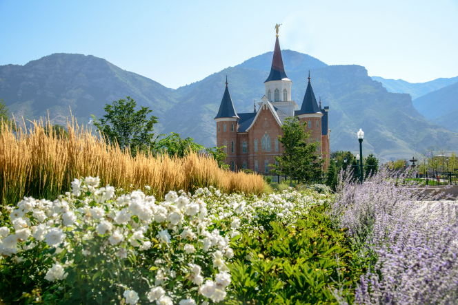 Flowers, brush, and other vegetation around the Provo City Center Temple, with mountains in the background.