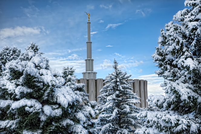 A view of the Provo Utah Temple spire, extending above the trees on the grounds covered in snow.