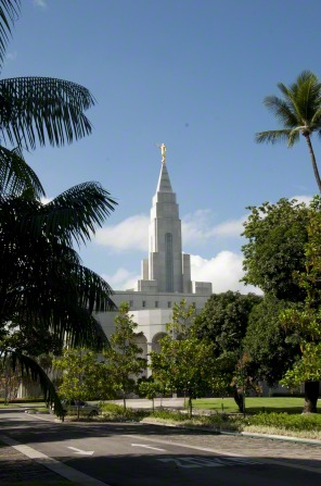 The spire of the Recife Brazil Temple extending above trees on the grounds of the temple, with a view of the road leading up to the temple in the foreground.