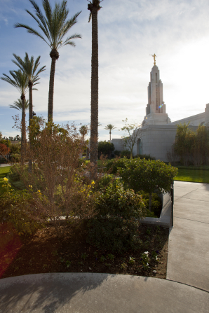 The grounds of the Redlands California Temple, with palm trees, bushes, and flowers and a partial view of the temple in the background, including the spire with the angel Moroni on top.