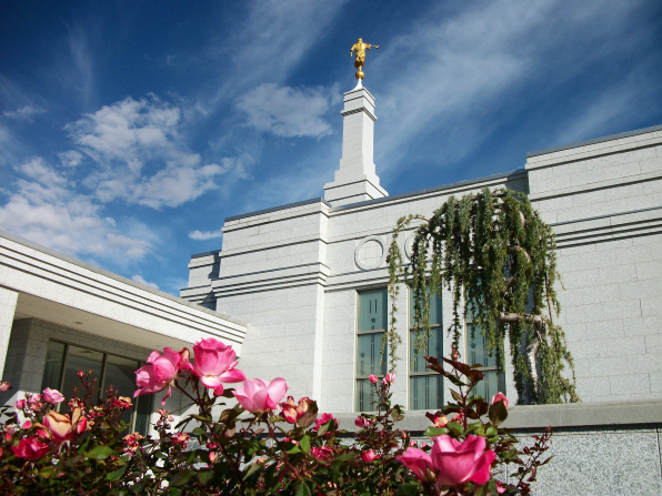 Flowers on the grounds of the Reno Nevada Temple, with a view of the spire and some windows of the temple behind.