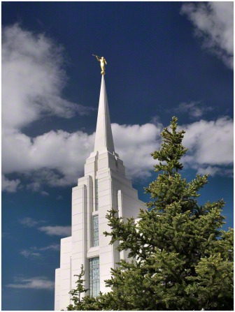 The spire of the Rexburg Idaho Temple extending above a tree on the temple grounds, with the angel Moroni on top.