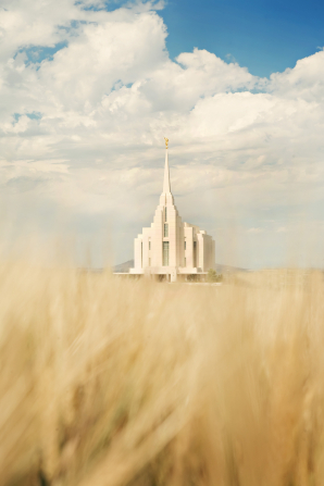 The entire Rexburg Idaho Temple, viewed from a wheat field, with a blue sky and clouds above.