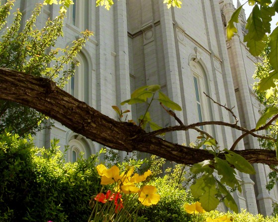 Flowers and trees on the grounds of the Salt Lake Temple, with a partial view of the temple in the background.