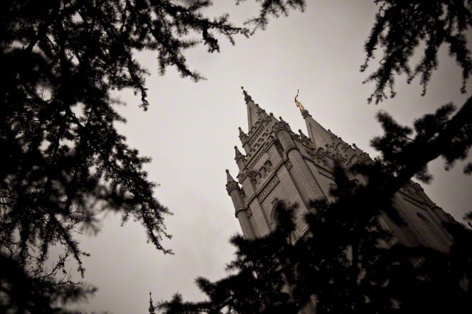 A view of the angel Moroni on the spire of the Salt Lake Temple through branches of trees.
