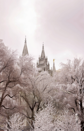 The spires of the Salt Lake Temple rising above the trees, all covered in snow in the winter.