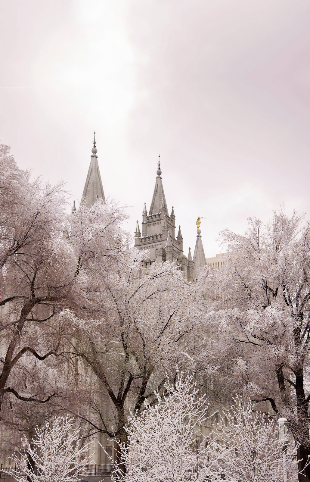 Salt lake temple spires - Lds temple wallpaper ...