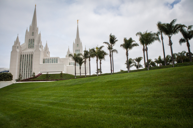 The San Diego California Temple, with a view of the grounds and a line of palm trees leading up to the temple.
